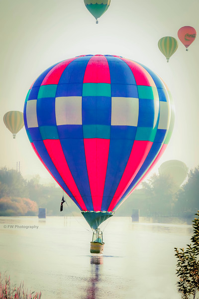 2012 Sept Hot Air Ballons 177.jpg