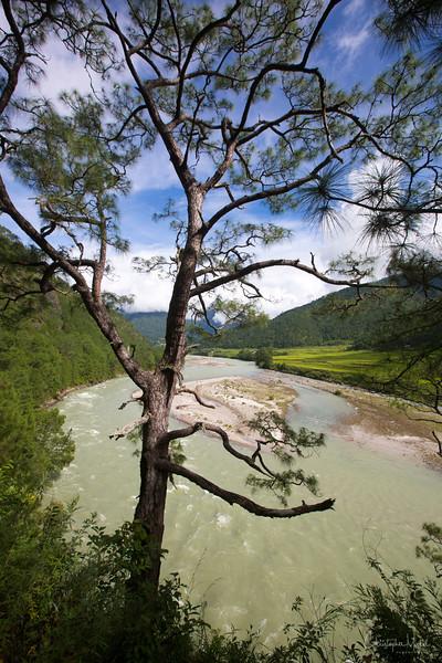 Po-Chhu_taj-tashi_thimpu_20120918_9786.jpg