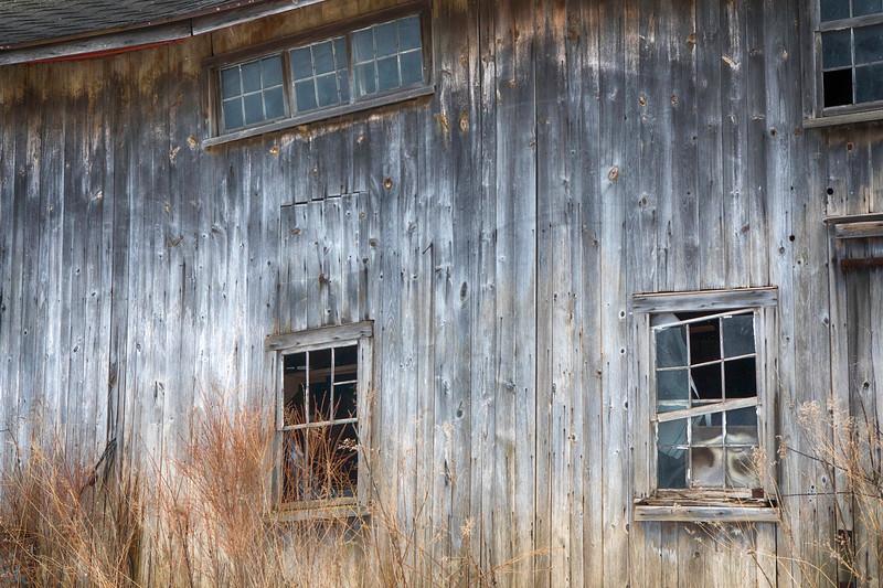 naigara and barns, snow-7177.jpg