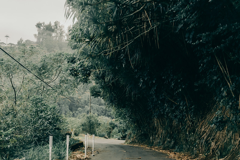 Hawaii20-397.jpg