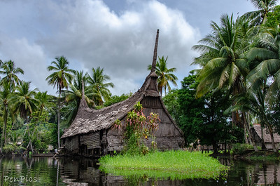 Palimbe Village ~Yatmul Tribe  ~Middle Sepik