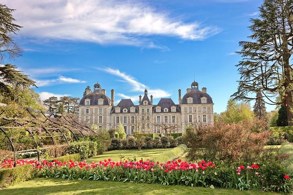 Champs de tulipes dans le Parc du Château de Cheverny