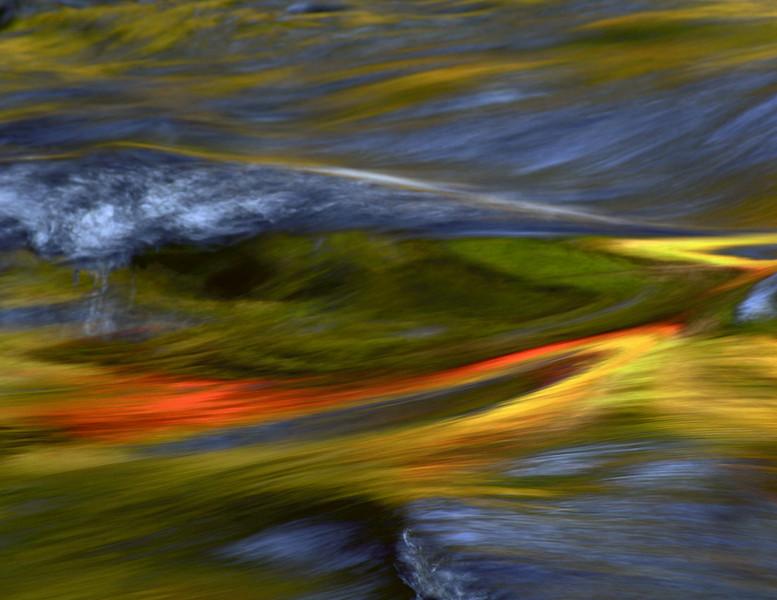 water swirl_MG_7301.jpg