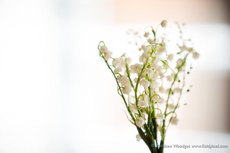 Woodget-140531-089--flower - Plants, wedding - 10018000 - 10000000 - IPTC-SUBJECT.jpg