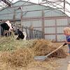 Dairy farm<br /> West Winfield, NY
