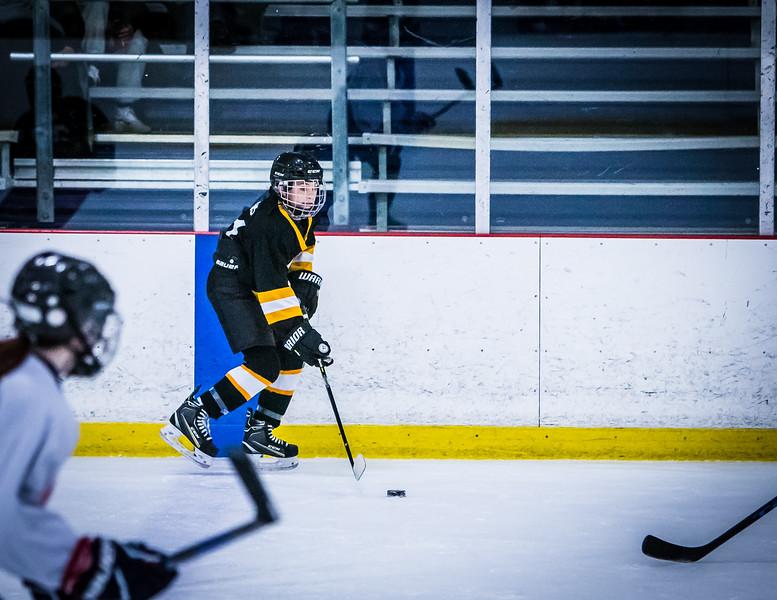 Bruins2-338.jpg