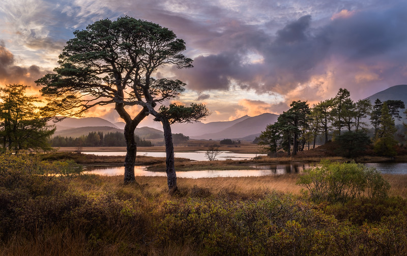 Scotland-13501-HDR-Edit.jpg