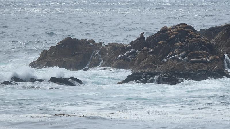California Day 3 Monterey 05-29-2017 106.JPG