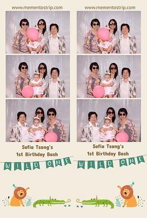 Sofia's Wild One Birthday