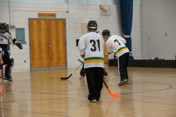 2012 RAMS Hockey