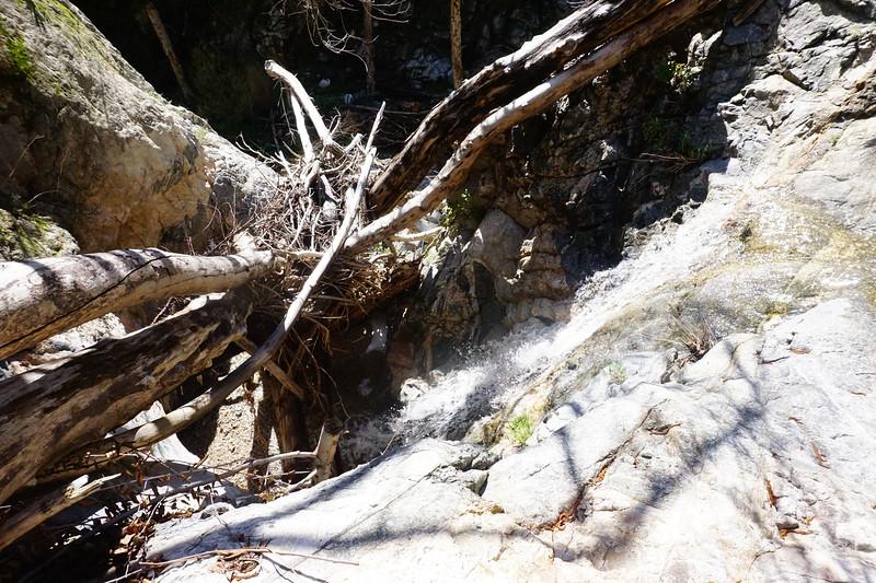20160218088-Gabrielino Trail Scouting.JPG