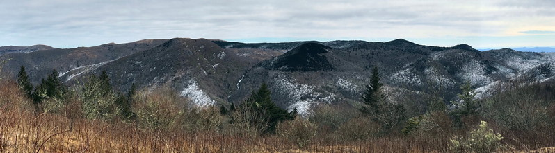 Green Knob -- Middle Prong Wilderness, Haywood County (1-14-18)