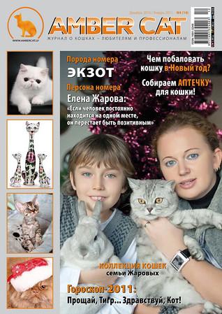 Amber Cat Magazin
