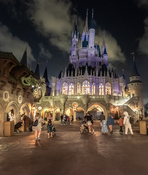 Disney-8117-Pano.jpg