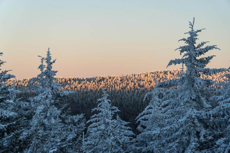 2019-12-06_SN_KS_December Snow-05218.jpg