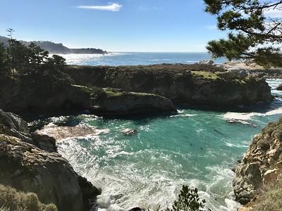Point Lobos -- Bird Island