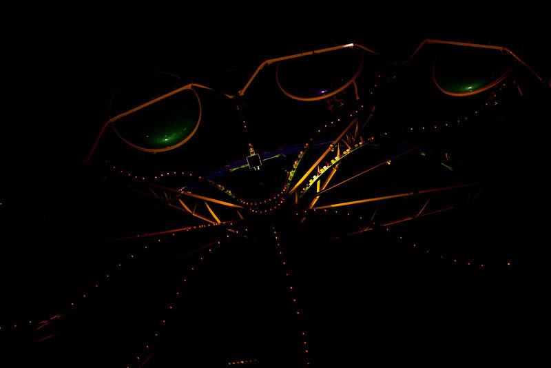 Happy-Spider_0737-www.jpg