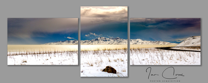Antelope Island Triptych - Syracuse, UT