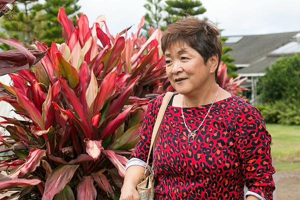 Hawaii - Hirabara Farms