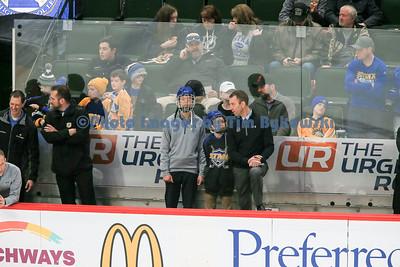 Boys Hockey State Tournament vs Duluth East