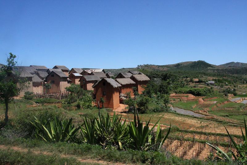 Madagascar8-Oda.jpg