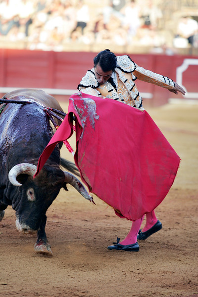 The Spanish bullfighter Uceda Leal. Bullfight at Real Maestranza bullring, Seville, Spain, 15 August 2006.