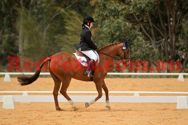 2014 10 18 Swan River Horse Trials Dressage EvA65