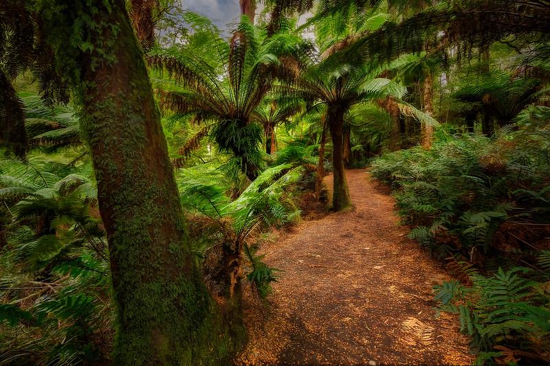 (2309) Maits Rest, Victoria, Australia