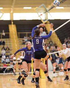Volleyball Mount Union vs Buffalo state