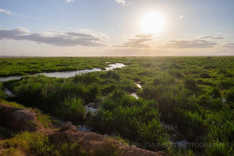 Jay Waltmunson Photography - Kenya 2019 - 166 - (DXT19411).jpg