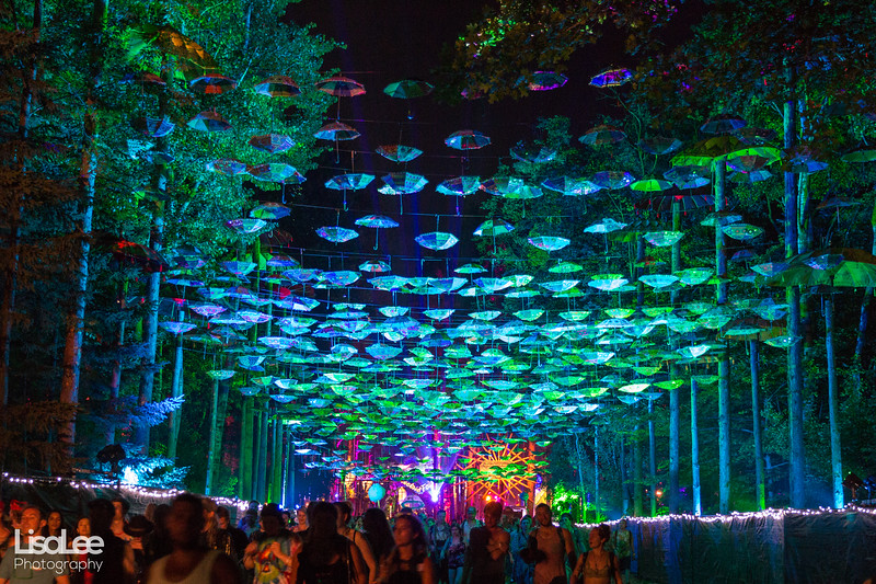 2018-06-30_ElectricForest_13.jpg
