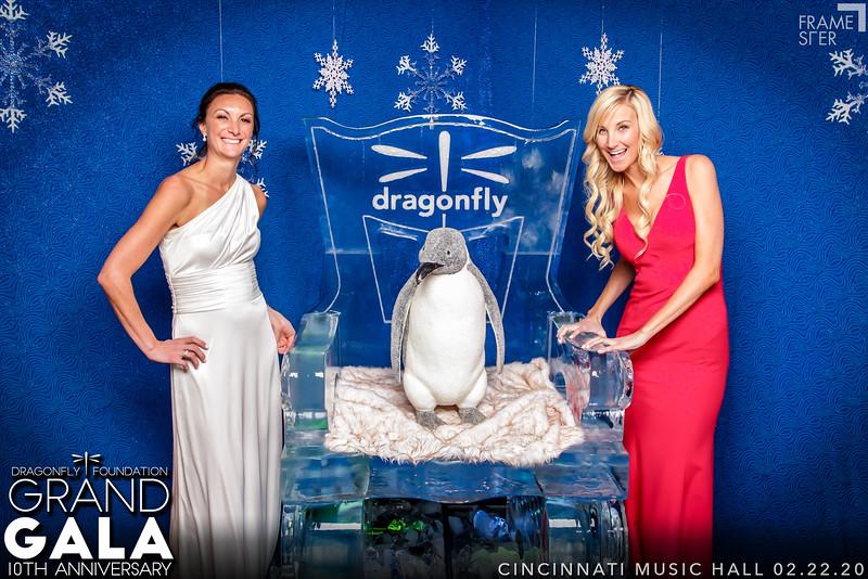 Dragonfly Gala 2020
