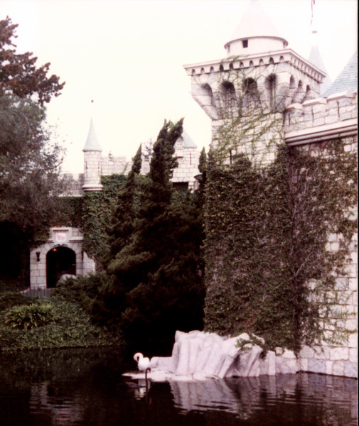 Castle with swan