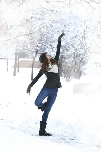 Alberta in the Snow