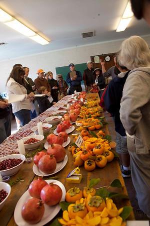 2009 Wolfskil Pomegranate Tasting