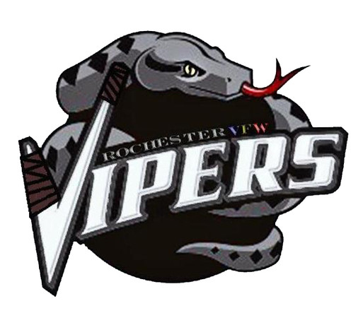 2014-15  Tourney Champs 14A Vipers