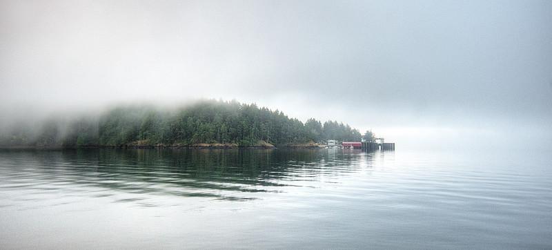 2014Orcas_Fog.jpg