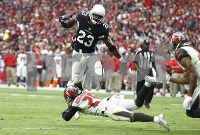adrian-peterson-scores-twice-as-cardinals-hold-off-bucs-3833