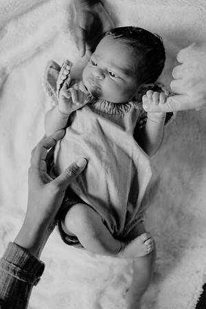 Gieber Family Newborn