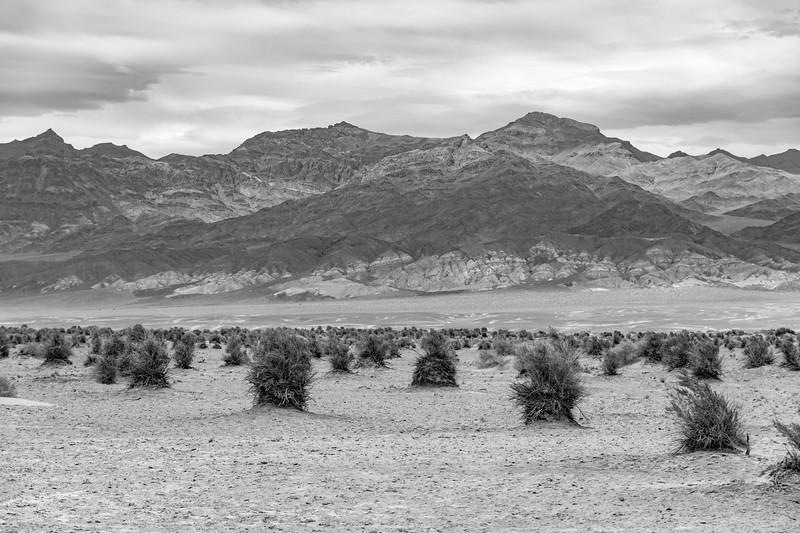 Death-valley-National-park-devils-haystacksBW.jpg