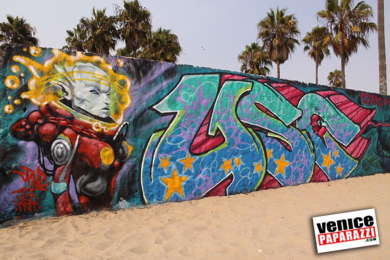 09.01.09  Venice Public Art Walls, Tonan, Venice Skatepark, bike path and beautiful Toronto Women. (4).JPG