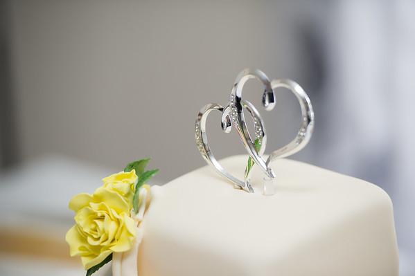 Niruja & Ramanan Engagement