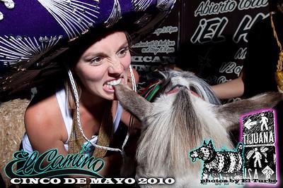 Cinco De Mayo 2010 @ El Camino