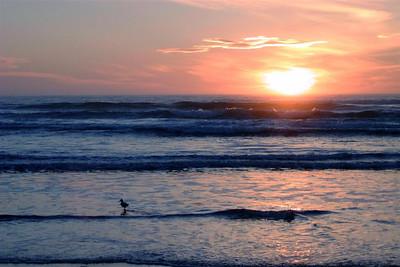 1999-11-27 Sunset in Watsonville