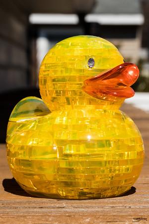 Puzzle Duck