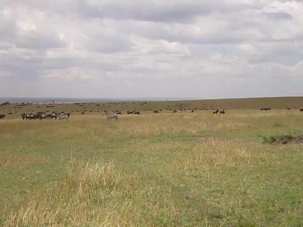 Tanzania14-3953.mp4
