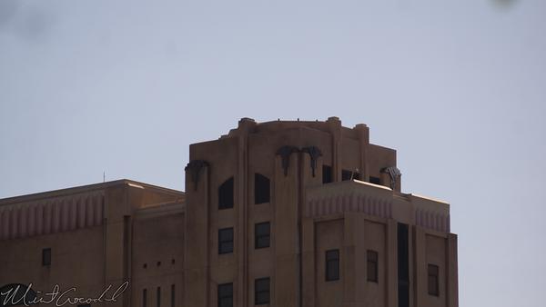 Disneyland Resort, Disney California Adventure, Hollywood Tower Hotel, Twilight Zone, Tower of Terror, Sign