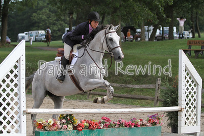 Ring 1: Adult Equitation and Low Hunter