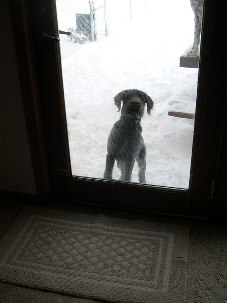I'm see you!  Hurry, it's 20 below 0 out here!