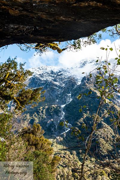 Westland Tai Poutini National Park 8